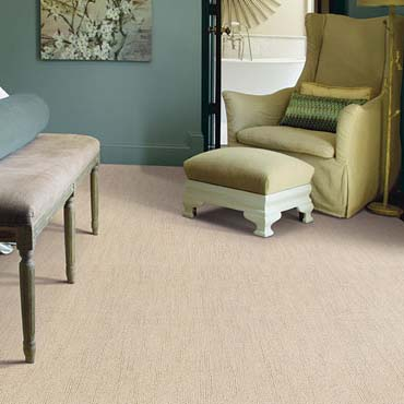 Caress Carpet by Shaw | Lakeside, AZ